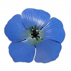 broche fleur de lin